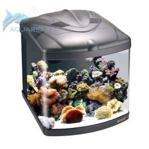 Jumbo nano reef aquarium 58 litres for Aquarium recifal complet