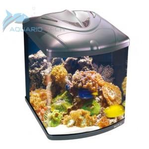 Nano aquarium r cifal complet 128 litres for Aquarium marin complet